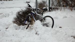 snow bound bike