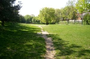 the beaten path?