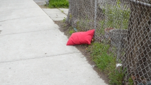 the red pillow