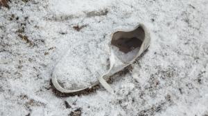 snowsho