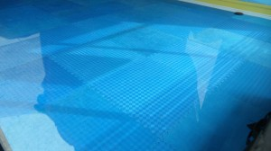 bluefloor