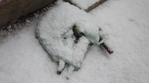 snowbottles