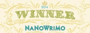 nanoWinner-2014