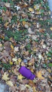 purplemitt