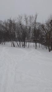 winter04