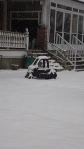 snowtoy