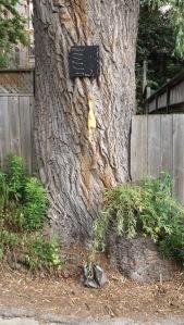 treeart02
