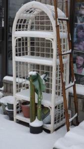 24-snowshelf