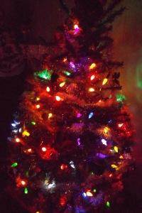 31-treelights