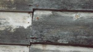 01-texture01
