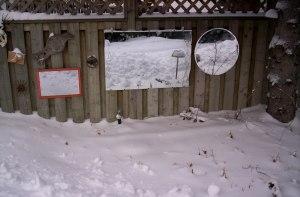 06-snow01