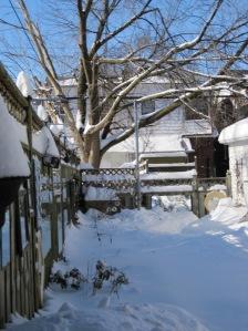 06-snow04